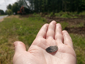Arkæologerne graver før anlæggelse af cykelsti i Gudme